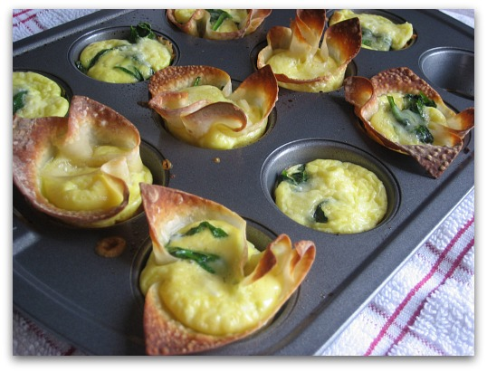 Mini Quiche Won-Ton Cups