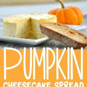 Pumpkin Cheesecake Spread :: always a hit at parties!