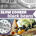 Tips, Tricks and Recipes for Uber Easy Black Beans... in the crock-pot!