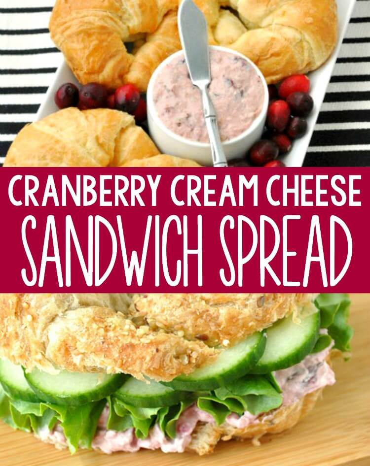 Cinnamon Walnut Cranberry Cream Cheese Spread  Collage