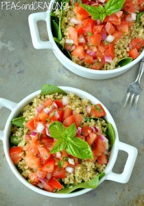 Bruschetta Quinoa Salad - all the flavor of fresh bruschetta in a healthy gluten-free salad! This is SO GOOD!