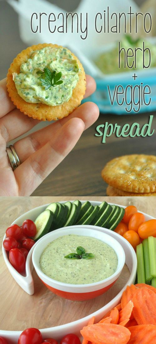 This creamy cilantro herb and veggie spread is positively delicious and compliments everything from crackers to mountain-high sandwiches and wraps!