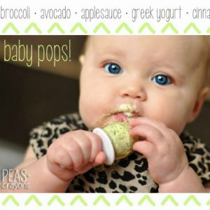 Baby Pops: Healthy Veggie, Fruit, and Yogurt Pops for babies and kids!