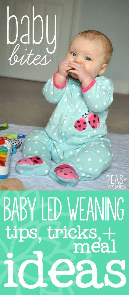 Baby Bites: Adventures in Baby Led Weaning! We love to eat! Here's a peek at our plates to get you started making balanced, healthy meals for tiny tummies!