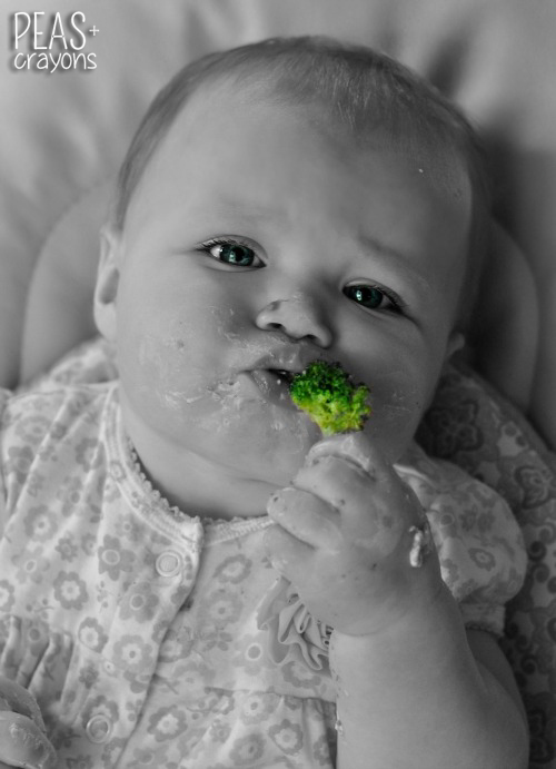 Broccoli Baby Led Weaning